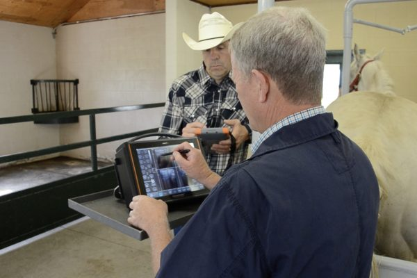 Equine vet shares experience with EmberEquine Ultrasound and Recordkeeping Solution