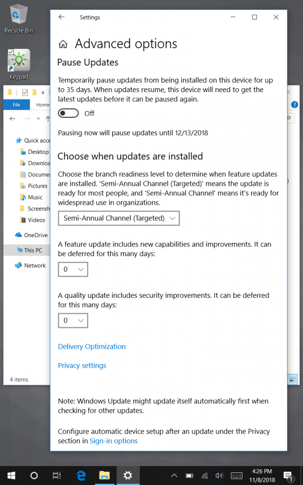 Microsoft 10 updates options