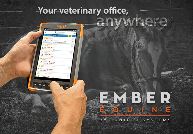 With EmberEquine, the OSU College of Veterinary Medicine Ranch pushes treatment and learning further