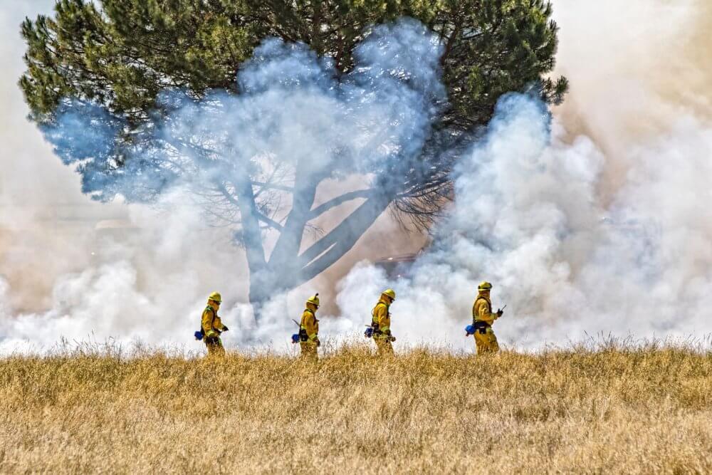 Firefighters in the field